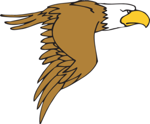 Peregrine Falcon clipart cartoon Bald Eagle art at Bald