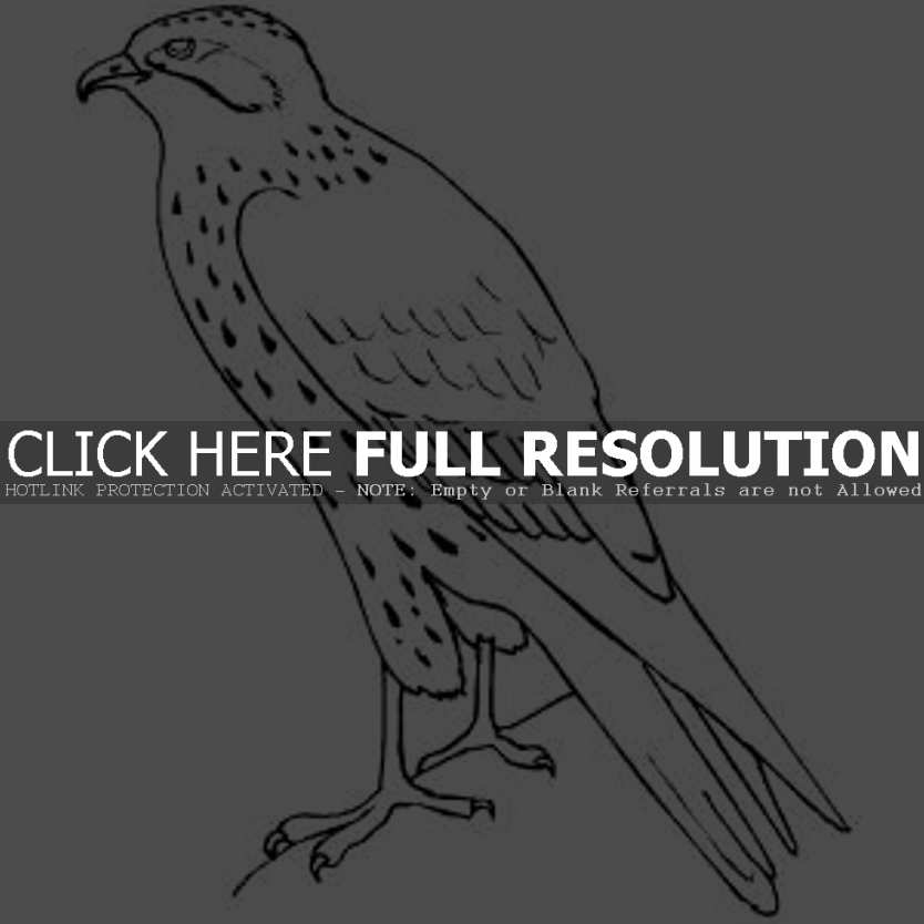 Peregrine Falcon clipart coloring Pages falcon Children Standing coloring