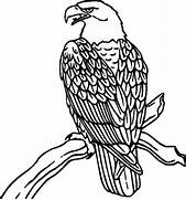 Peregrine Falcon clipart coloring Pages falcon  perched Peregrine