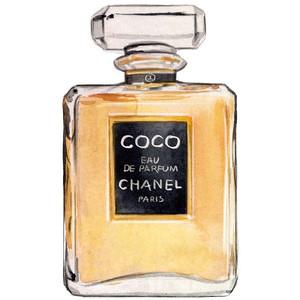 Perfume clipart coco chanel Coco Eau Coco Chanel Illustration