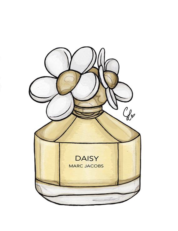 Perufme clipart daisy By by Daisy Daisy DeviantArt