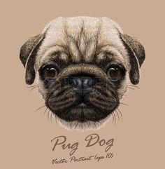 Perro clipart veterinary assistant Amasado • Ilustraciones Lindo The