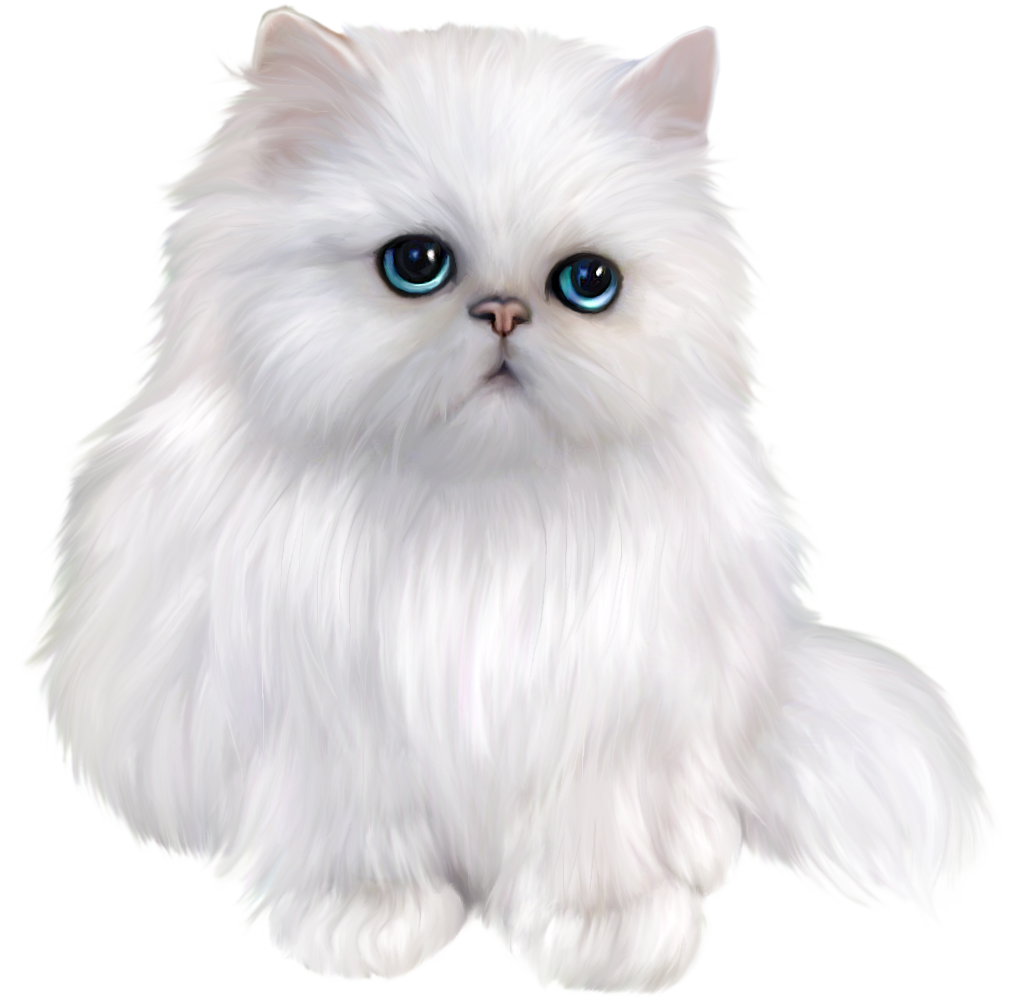 Persian Cat clipart cute cat Cat Cat Clipart ✪ Persian