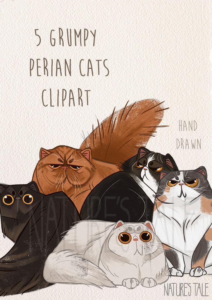 Persian Cat clipart cute cat Clipart Cat  digital Art