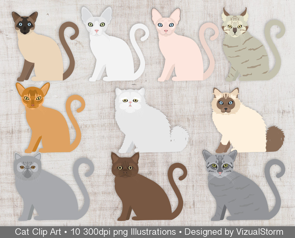 Sphynx Cat clipart Party file Cats Kitty Cat