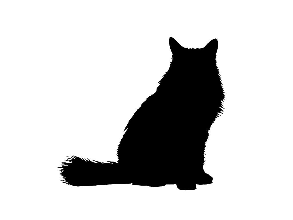 Furry clipart persian cat #2