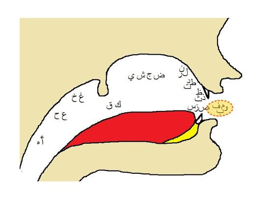 Persian clipart punjab Punjabi  prior they Urdu