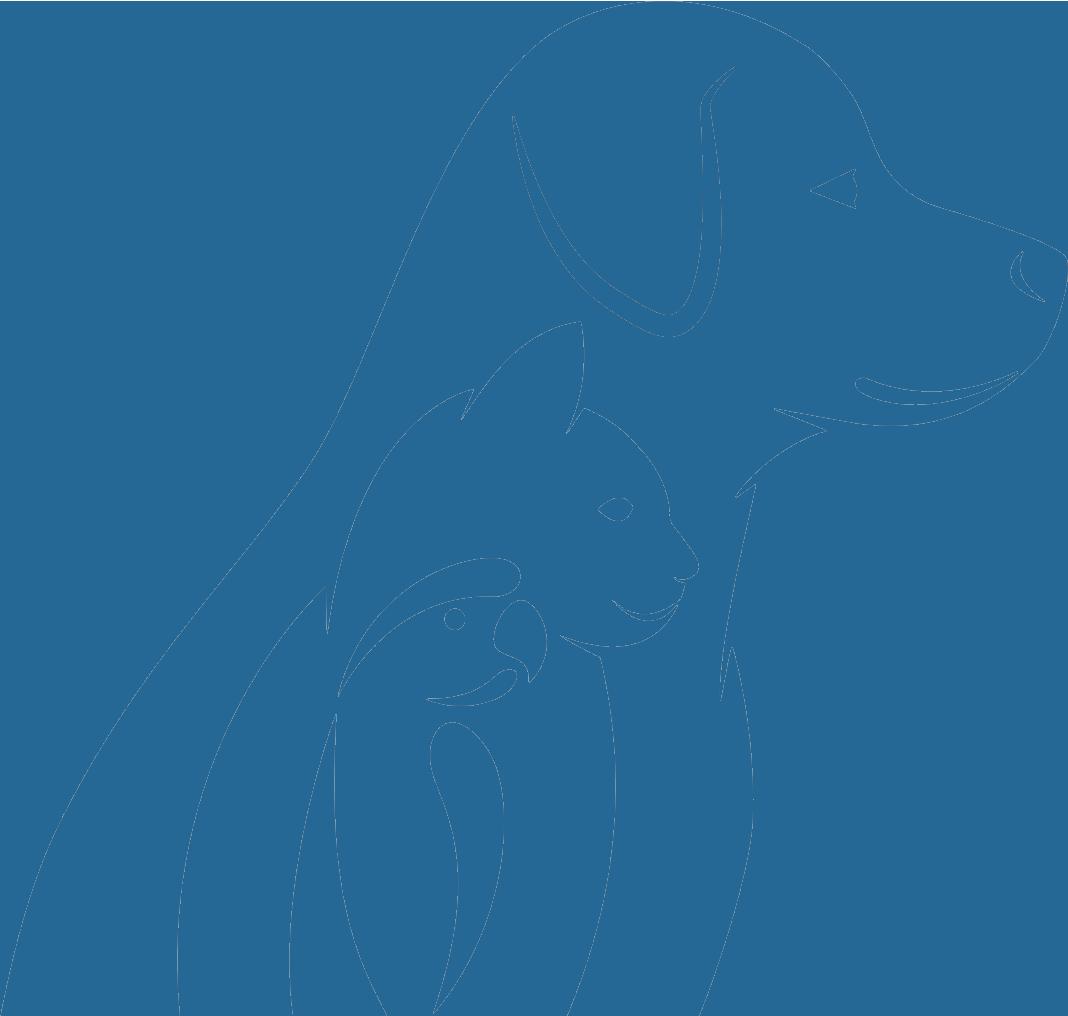 Pet clipart animal hospital Las NV Northwest Veterinarian Veterinary
