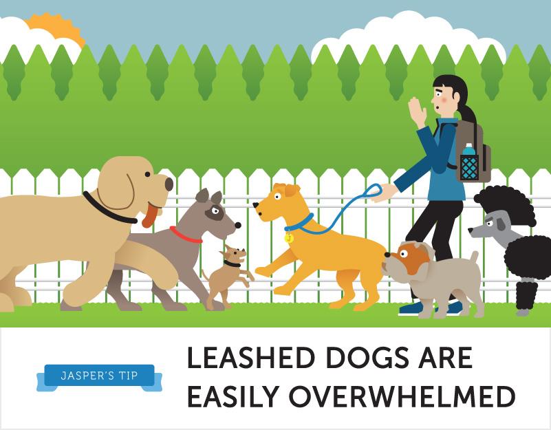 Pet clipart dog park Mascot types of lovers Park