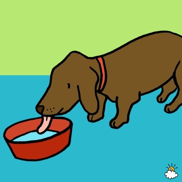 Pet clipart drinking water Heatstroke: dog water ice and