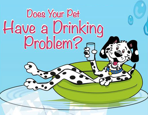 Pet clipart drinking water Your shade stroke outside Problem?