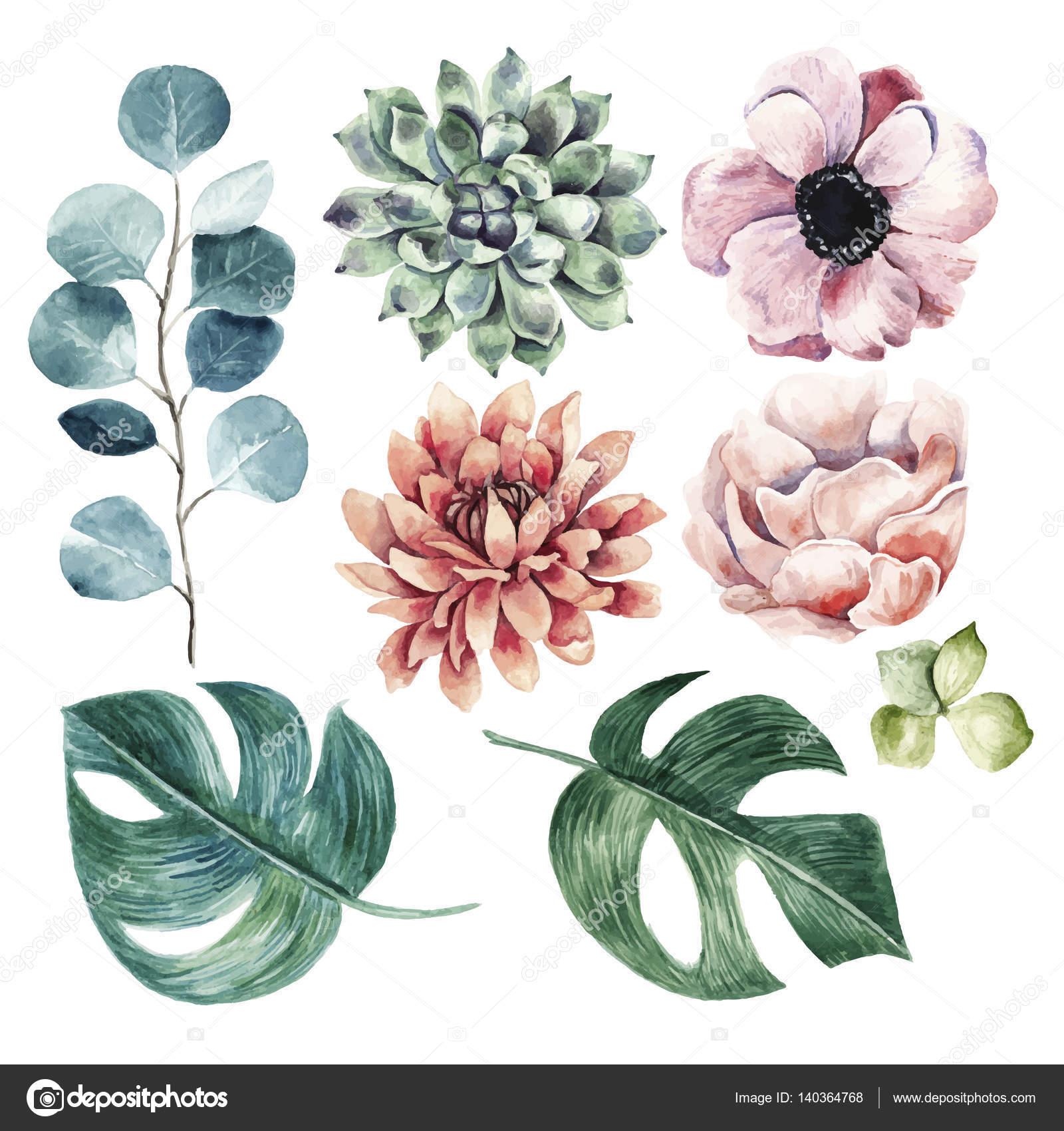 Petal clipart big flower Flower Watercolor collection illustration #140364768