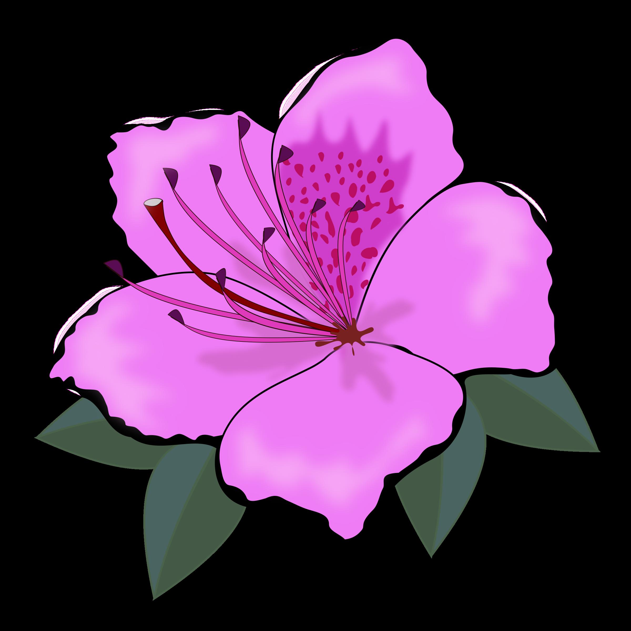 Petal clipart big flower Clipart flowers of flowers clipart