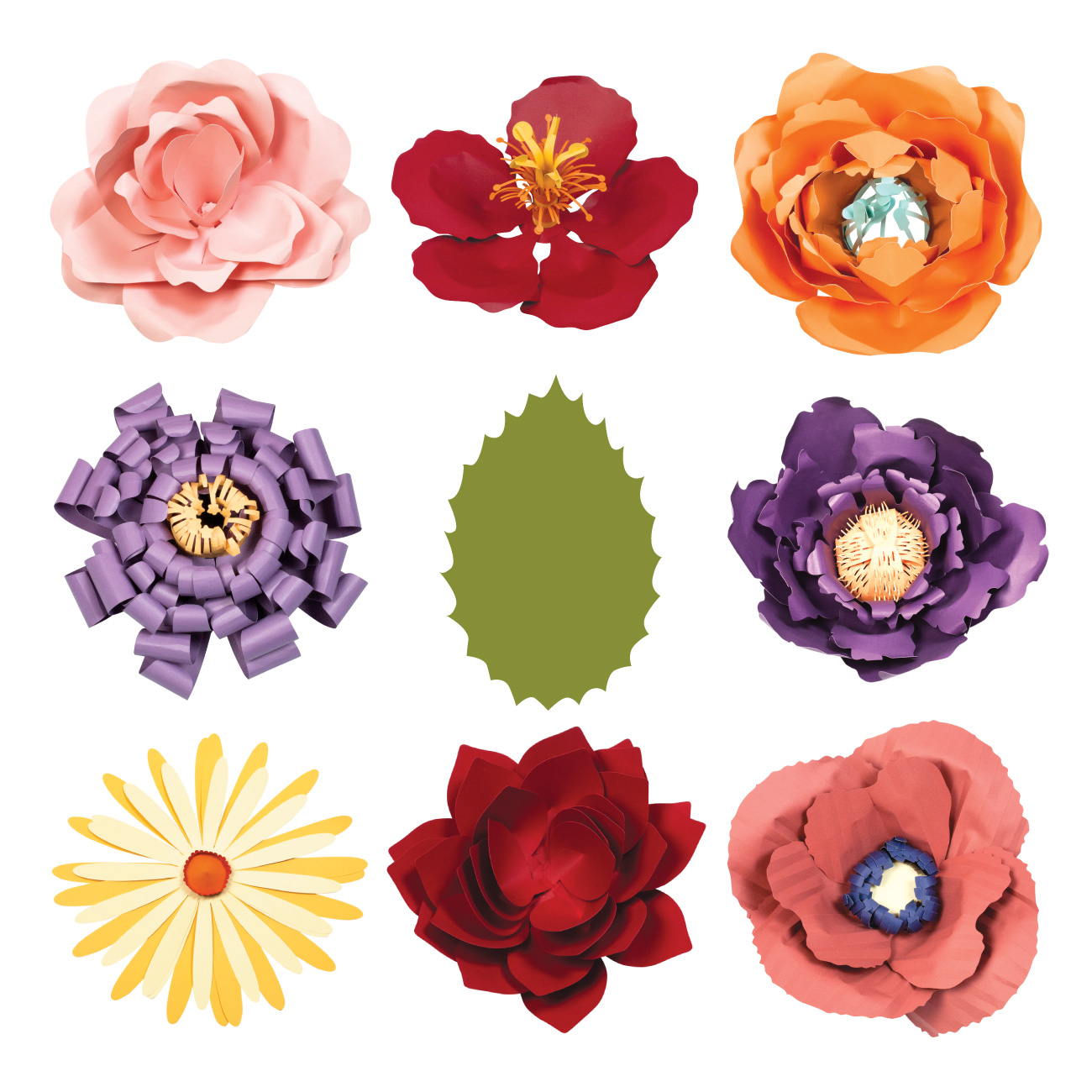 Petal clipart giant flower  Flowers Giant
