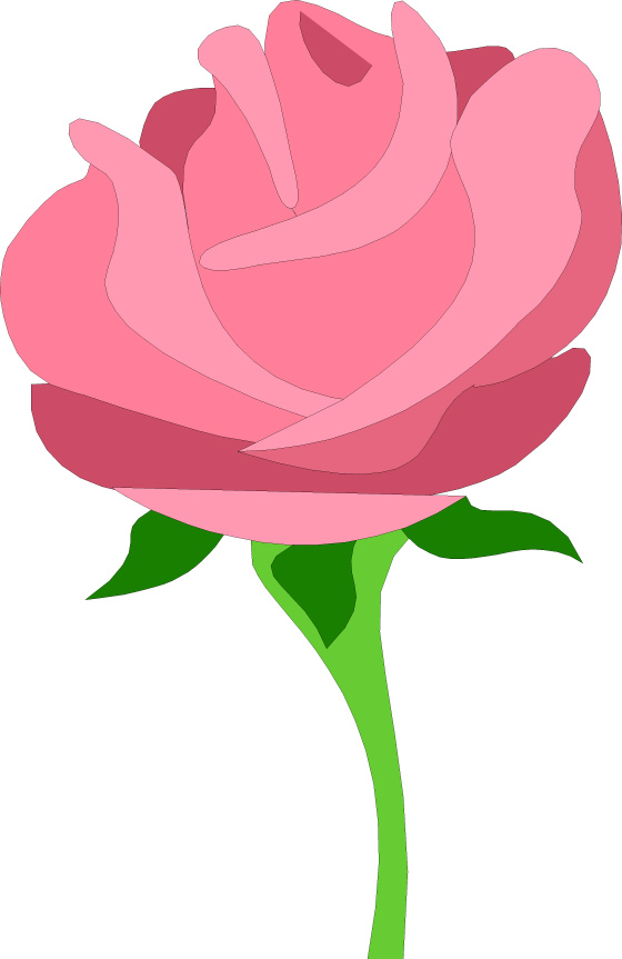 Pink Rose clipart pink gold Pink clip rose Large tea