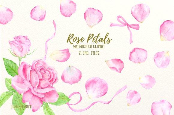 Petal clipart pink rose  Petals on Illustrations Watercolor