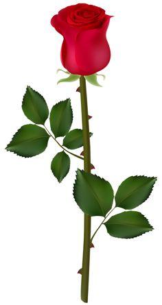 Petal clipart rose stem Rose Clipart Rose Rose Red