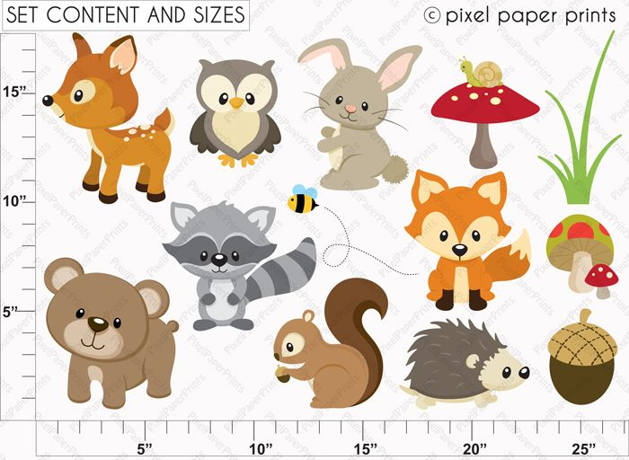 Baby Animal clipart woodland This Animals Woodland Pinterest All