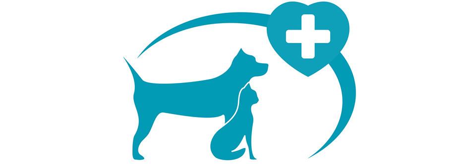 Pet clipart animal hospital Hospital · Services Pet Links