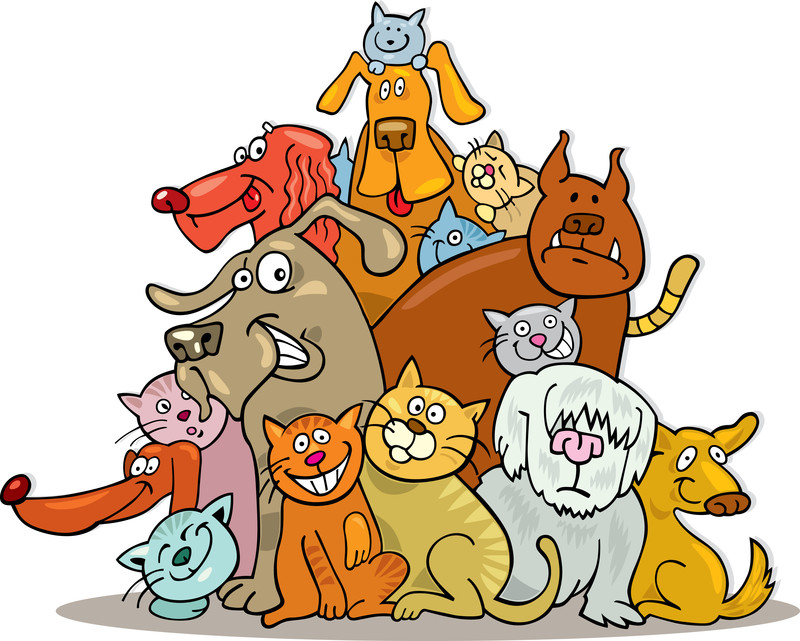 Pets clipart animal shelter Friday 4PM animals for The
