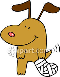 Pet clipart bandage A Dog Clipart Bandage Injured