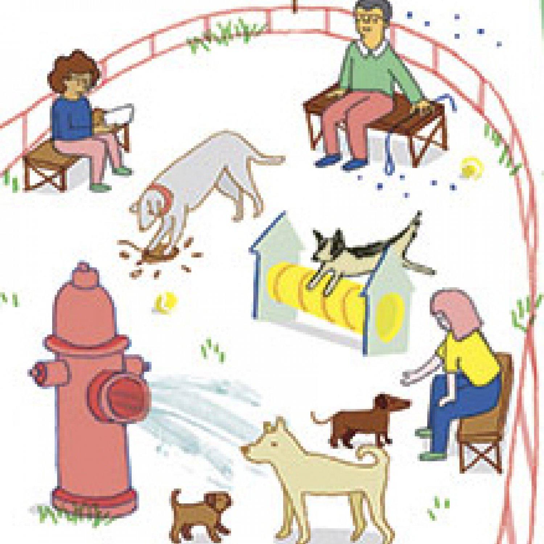 Pet clipart dog park Park Dog 10 of Pets