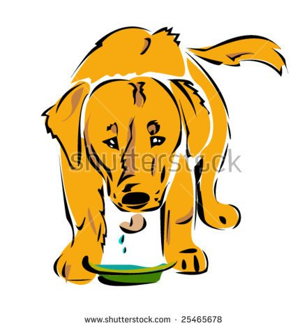 Pet clipart drinking water Free clipart water water Dog
