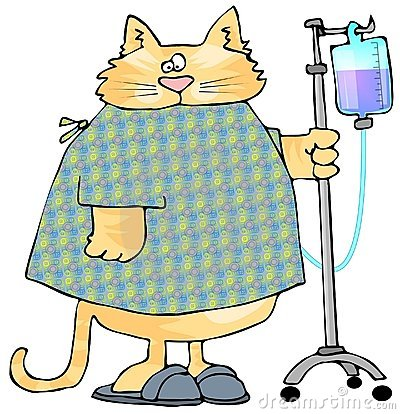 Pets clipart sick Cat Cat Clipart Sick Sick