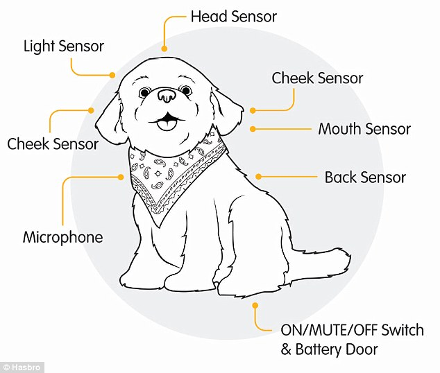 Pets clipart touch To puppy owning in built