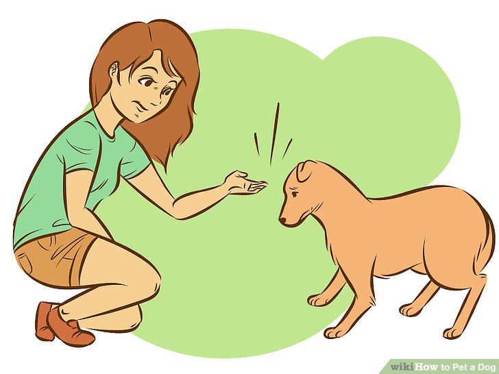 Pets clipart touch (with Pet titled Step a