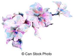 Petunia clipart Petunias Clip free Flower sketch