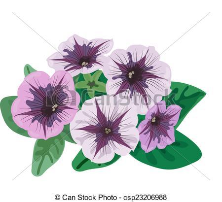 Petunia clipart On Illustrations Petunia and petunia