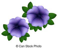 Petunia clipart Petunia Clip free in color