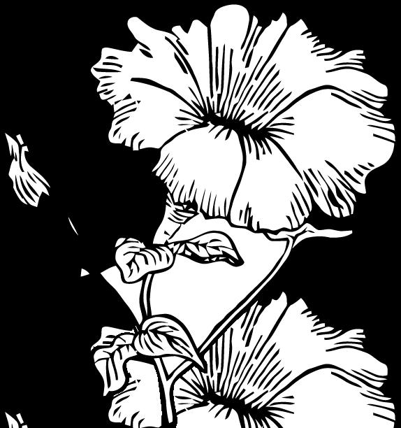 Petunia clipart black and white Free Ephemeraphilia Art: Art: