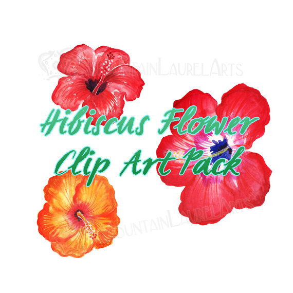 Petunia clipart hibiscus flower Watercolors Collage Scrapbooking from Hibiscus