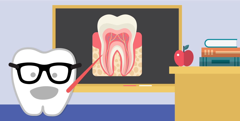 Phanom clipart monster tooth Fun Big Little 5 Teeth