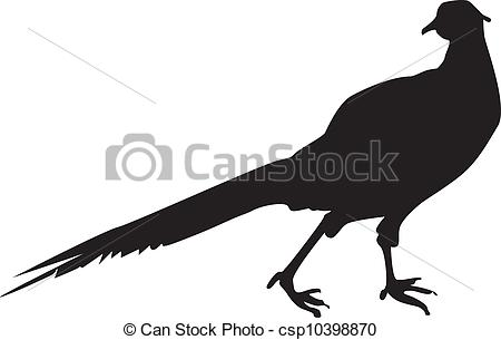 Pheasant clipart bird hunting Download #14 clipart clipart clipart