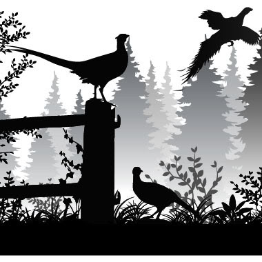 Pheasant clipart grouse Scene woodland  silhouette Crafts