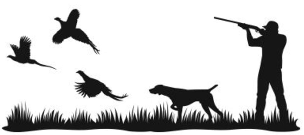 Pheasant clipart grouse Home