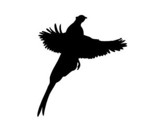 Pheasant clipart grouse Long 3 Vinyl Etsy Decal