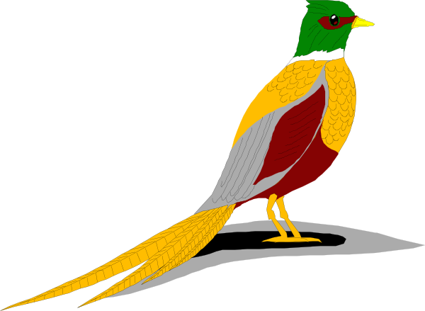 Pheasant clipart ring necked Vector  Art Necked this