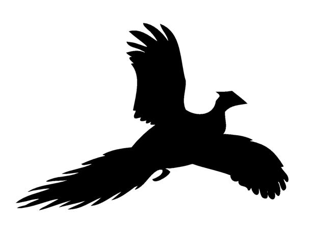 Pheasant clipart silhouette Pinterest silhouette Google pheasant silhouette
