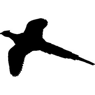 Pheasant clipart silhouette Pheasant silhouette Flying Pheasant Flying