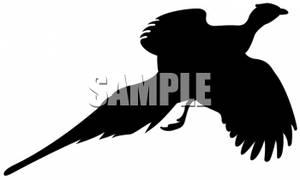 Pheasant clipart silhouette Pheasant Silhouette  Clipart