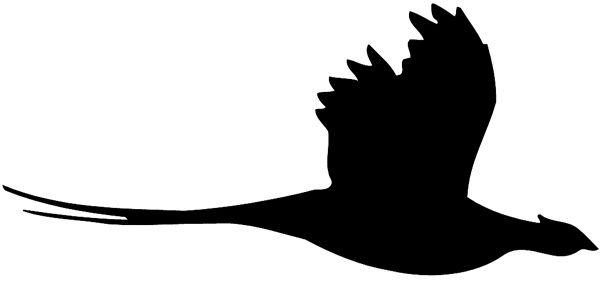 Pheasant clipart silhouette Hunting silhouette Pheasant Hunting Pheasant