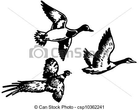 Pheasant clipart track Pheasant Outline Diff Trois
