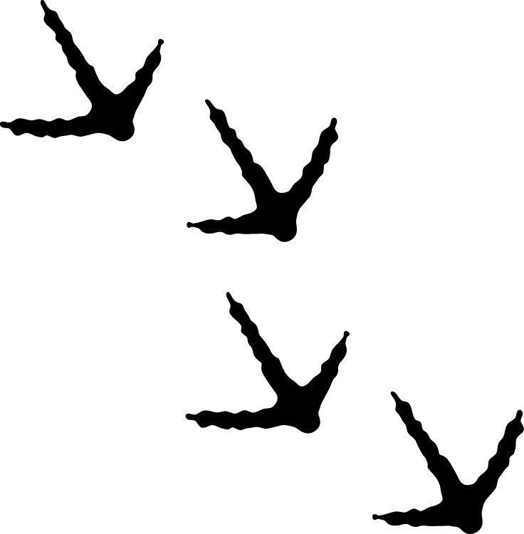 Pheasant clipart track Turkey clipart Turkey Tracks tracks