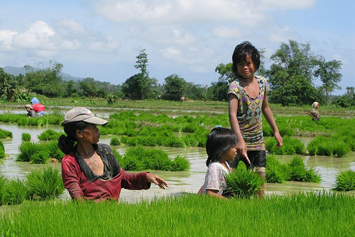 Phillipines clipart filipino farmer & Gallery Filipino Philippine Farmers