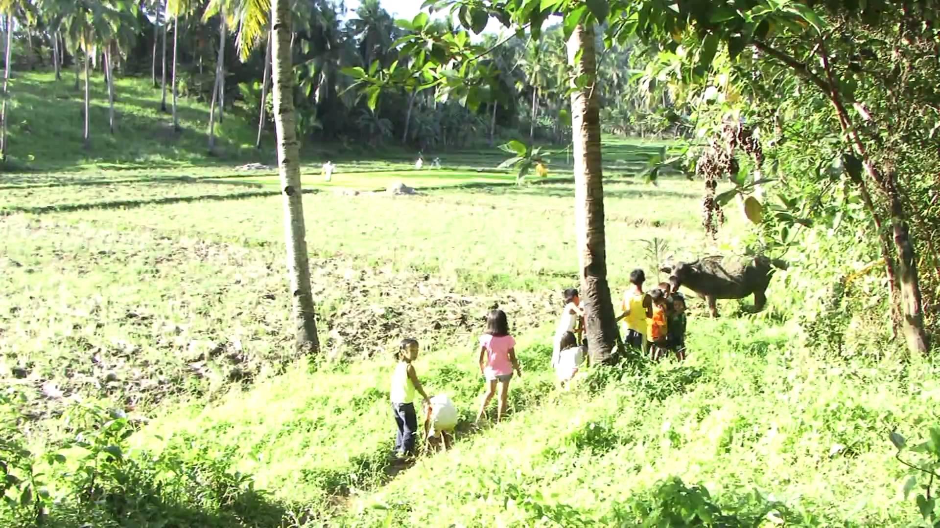 Phillipines clipart filipino farmer Philippinen auf 1000+ und Philippinen