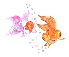 Phillipines clipart pencil drawing Com gold facebook fish Choco